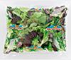 Mélange salade 4ème gamme